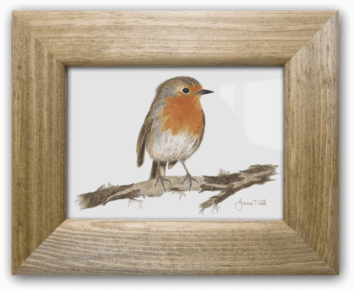 Wildlife Prints in Small and Large Solid Wood Frames from Joanne T. Kell