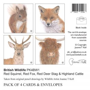 Wildlife Cards Pack contains Red Squirrel, Red Fox, Red Deer Stag & Highland Cattle
