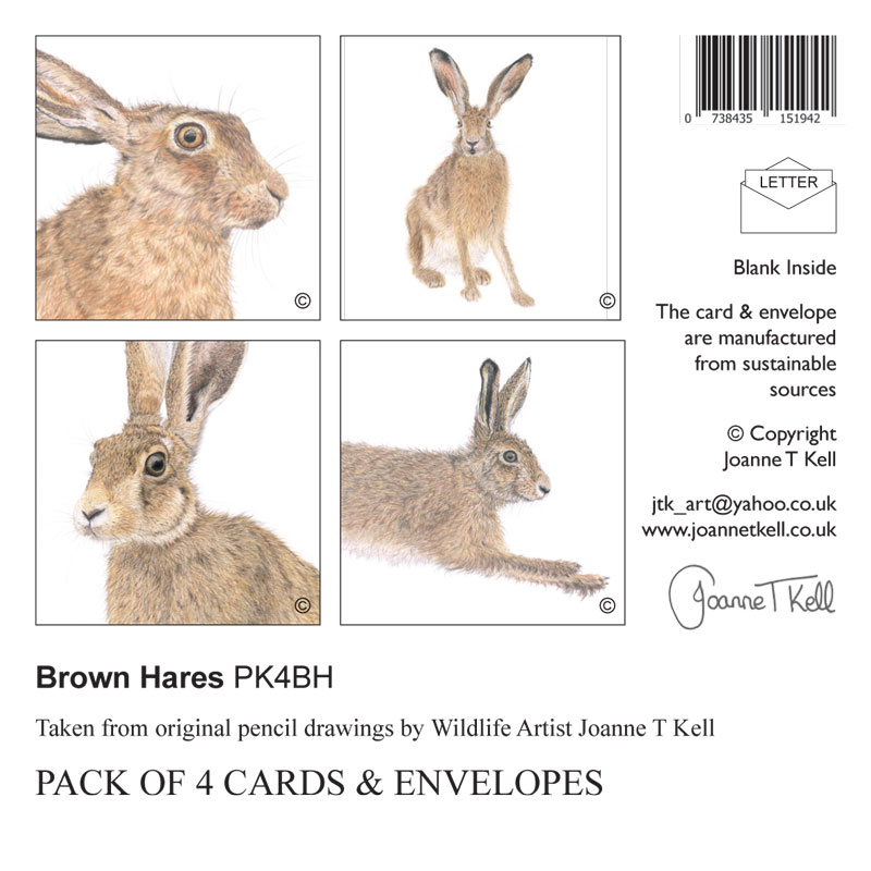 /'BROWN HARE/' WILDLIFE GREETINGS CARD-From Pencil Drawing By Artist Joanne T Kell