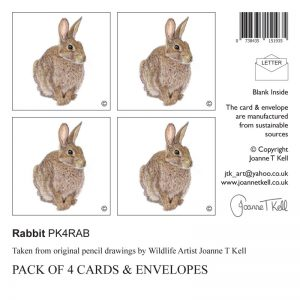 4 pack rabbit greeting cards